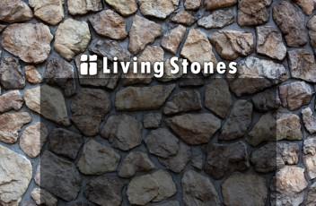 lsf_rocks