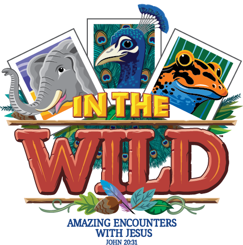 IN THE WILD VBS 2019